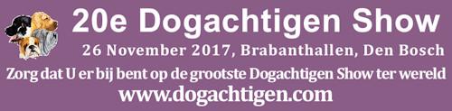banner doga 2017